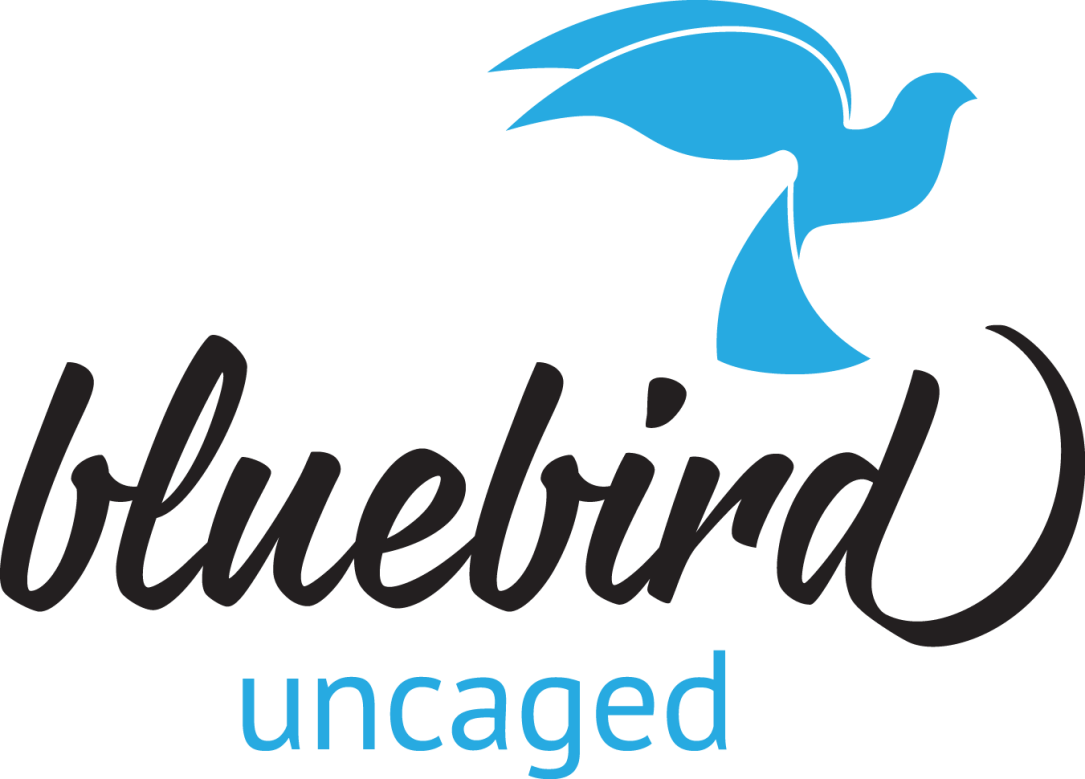 Bluebird_logo_color-noBG
